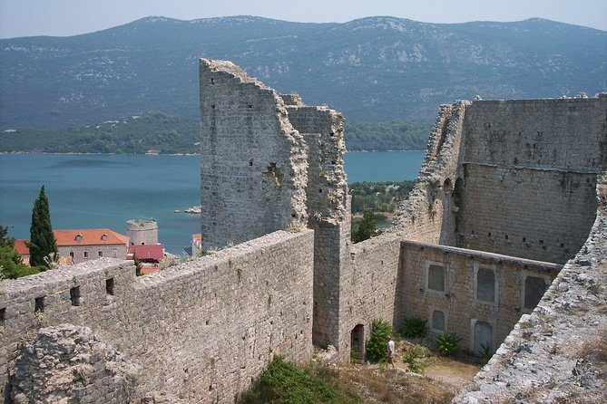 Private tour Ston and Peljesac wine tasting with lunch from Dubrovnik
