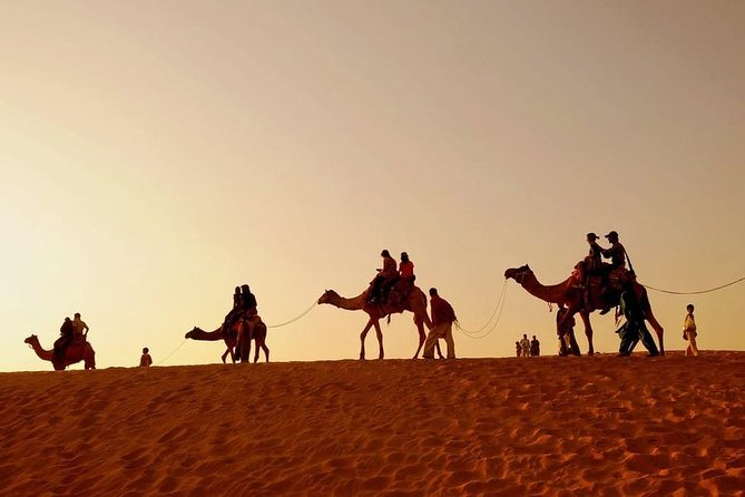 Ajmer Pushkar Same Day Tour with Camel Safari