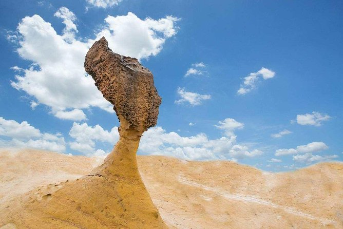 Skip the Line: Yehliu Geopark Admission Ticket