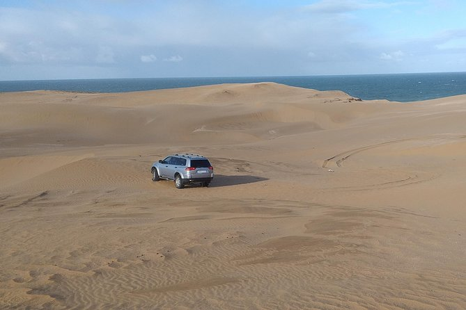 4 hours trip to Sahara and tifnit wild beach