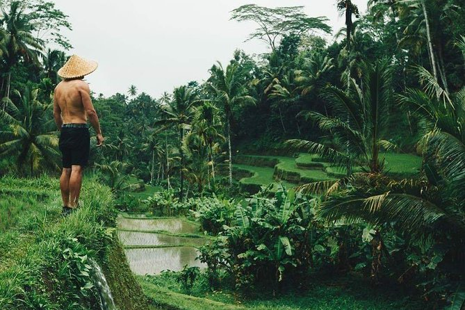 7 Thing to do in Ubud Tour In One Day