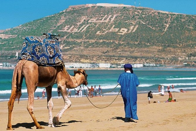 Private Premium Transfert From / To Marrakech To / From Agadir
