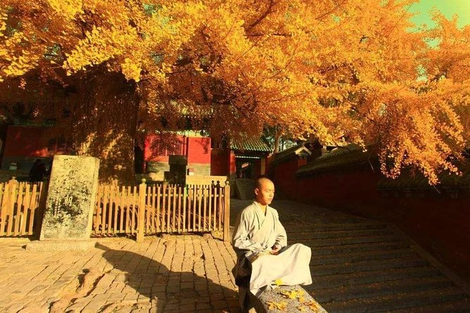 2-Day Private Tour from Qingdao with Hotel: Shaolin Temple and Longmen Grottoes