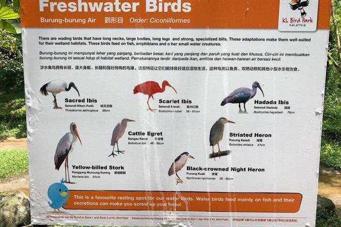 Kuala Lumpur Nature Tour- Butterfly Park, Orchid Garden, and Bird Park
