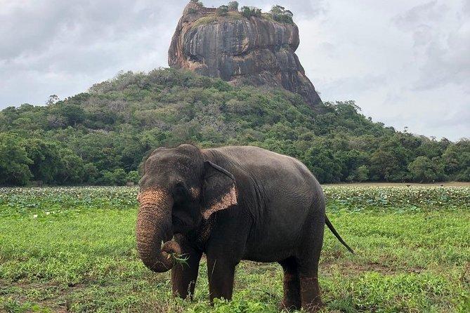 Sri Lanka With Sura