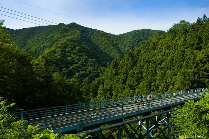 Half-Day Okutama Old Road and Lake Cycling Tour