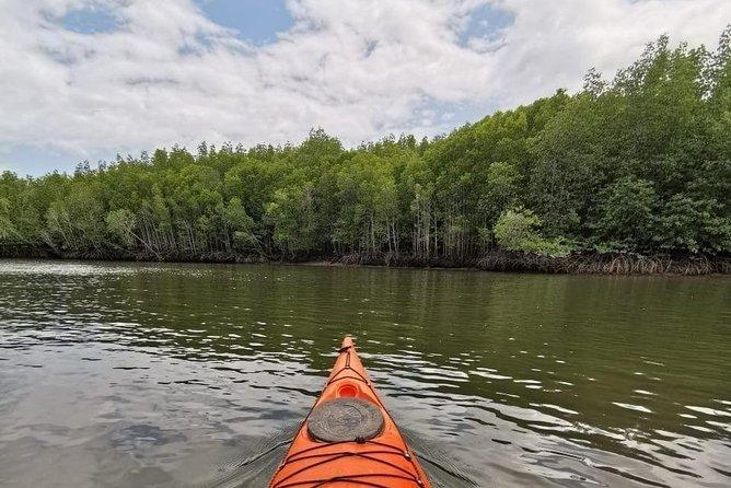 kayak tour inside tanjung rhu mangrove ,explore the mangrove and enjoy your time