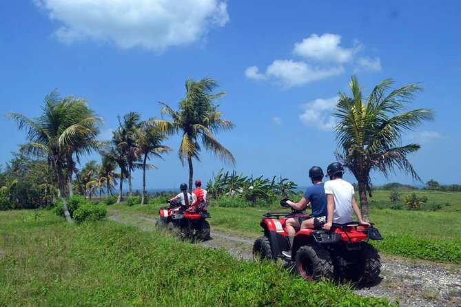 Full-Day Bali ATV Ride Adventure and Exploring Tour to Tanah Lot Temple