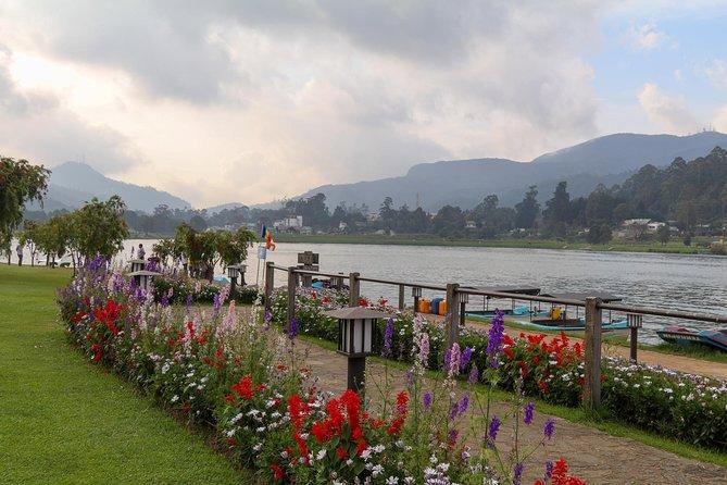 Nuwara Eliya - Mystic Mountain Encounter