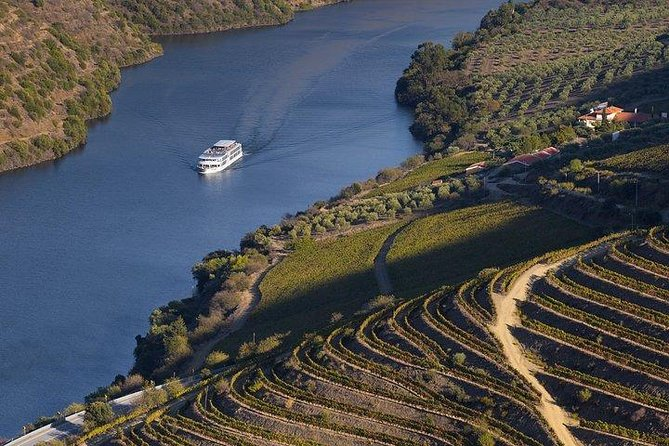 Day Cruise from Porto to Pinhão with Breakfast and Lunch