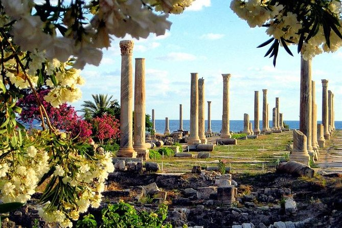 Half Day Budget Tour to Tyre