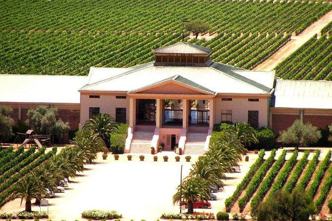 Veramonte vineyard tour
