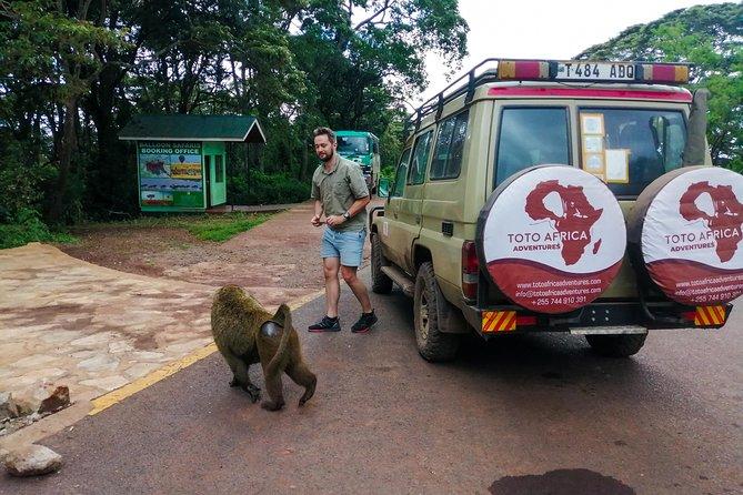 Classic Day Trip to Ngorongoro Crater Tanzania