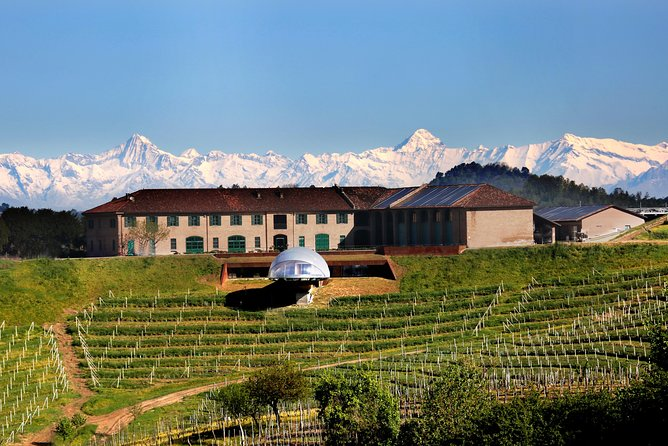 Rarity wine tour and tasting at Ceretto Winery