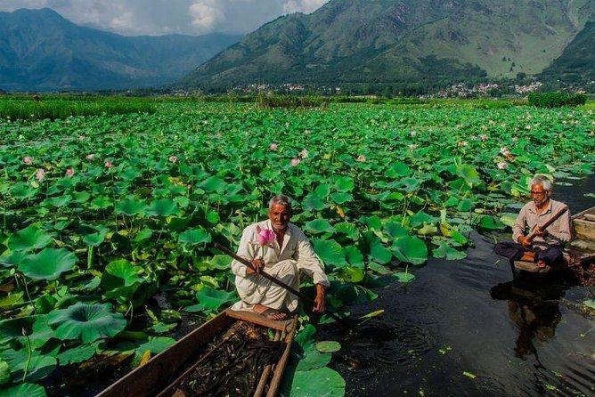 Private 4 Days Amazing Kashmir Tour From Srinagar