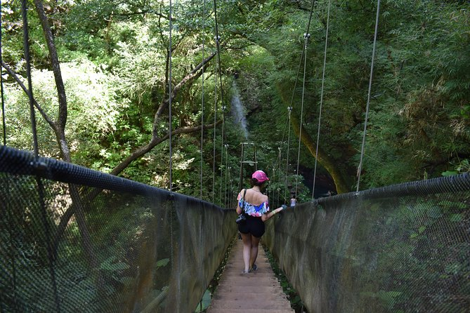 Rincón de la Vieja One Day Nature Pass