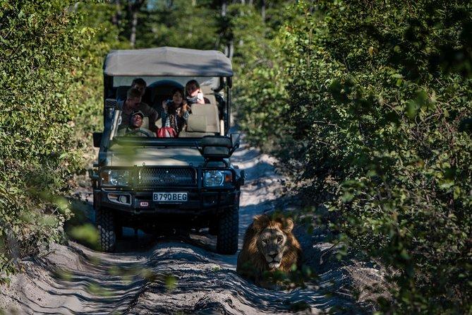 Safari Mabula Private Game Reserve, Johannesburg & Soweto all inclusive holiday