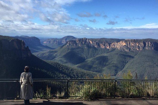 Blue Mountains, Koala Encounter and River Cruise