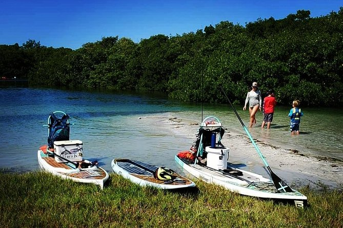 Paddleboard Adventures through Beautiful Florida Locations