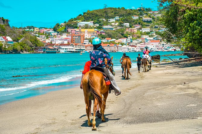 Grenada Beach and City Horse-Back Riding Adventure