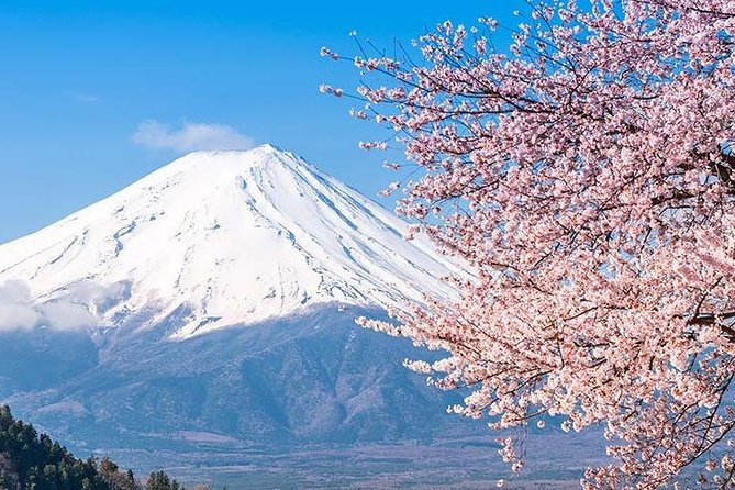 Private Full-Day Sightseeing Tour to Mount Fuji and Hakone