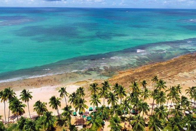 Private Praia dos Carneiros + Day use Bora bora