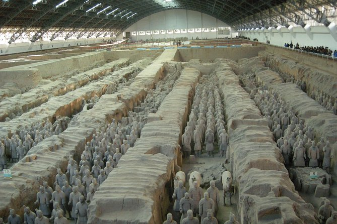 Xi'an Xianyang Airport (XIY) Pick up and Terracotta Warriors Museum Day Tour