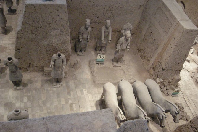 Xi'an Terracotta Warriors Museum and Xi'an Railway Station Drop off Day Tour