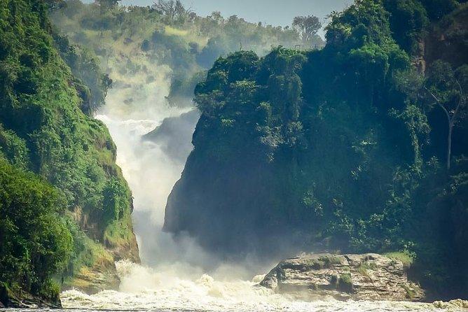 3 Days of Ziwa Rhinos & Murchison adventure