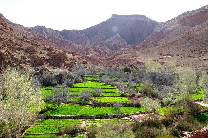 Morocco Desert - Kasbahs - Gorges - Camel Trek - One Night Camping Trip