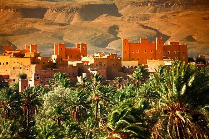 Discover the Sahara
