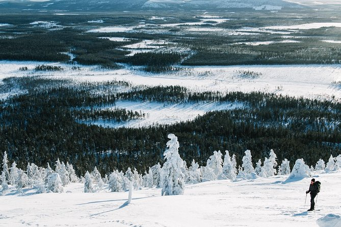 Introduction To Wilderness Skiing in Pyhä
