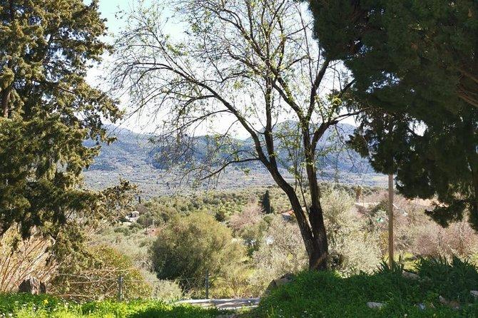 Agios Petros Top of the mountan Tour