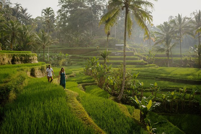 Iconic Photoshoot At The Ubud Kajeng Rice Fields With Local Pro-Photographer
