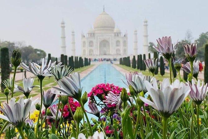 Day Tour-Taj Mahal & Agra Tour From Delhi By Car