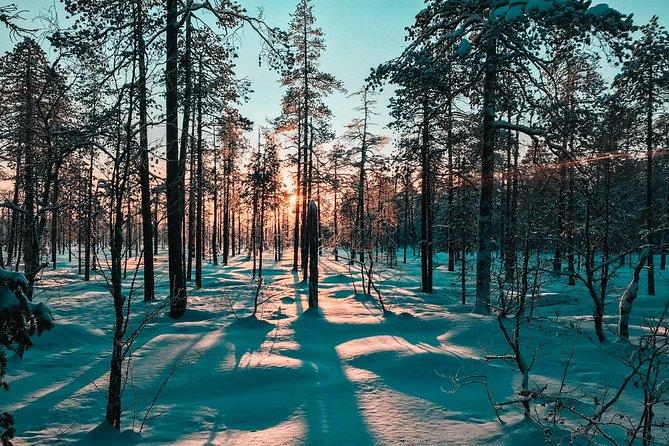 Snowshoeing tour in Pyhätunturi