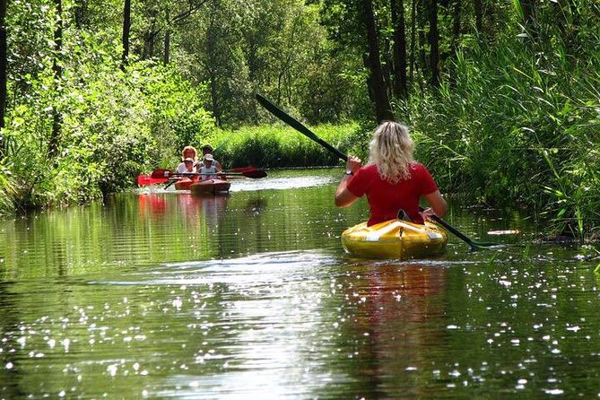 Kayak National Park & Giethoorn: Small Public Tour from Amsterdam (Coronaproof)