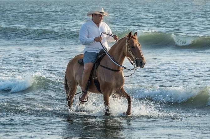Horseback Riding on the beach with Paso Colombiano Show