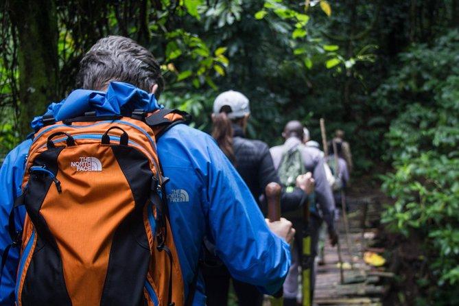 Visiting the Great Primates in Uganda (3 Days)