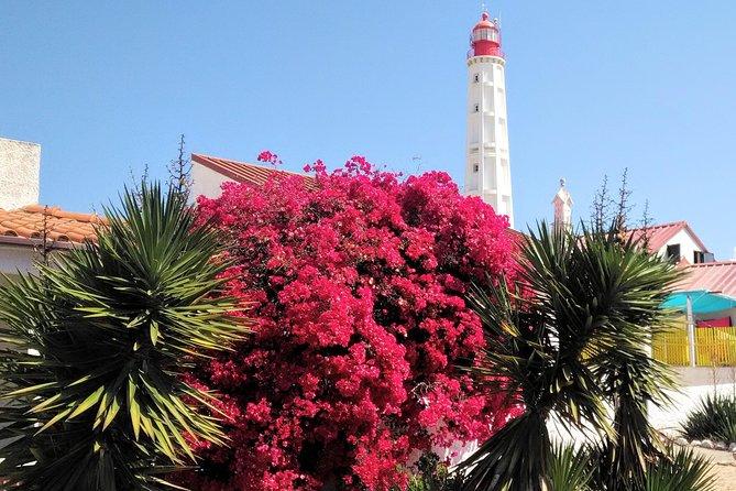 Faro - Ria Formosa tour with visit to 2 islands (Deserta, Farol) 3.5 hours