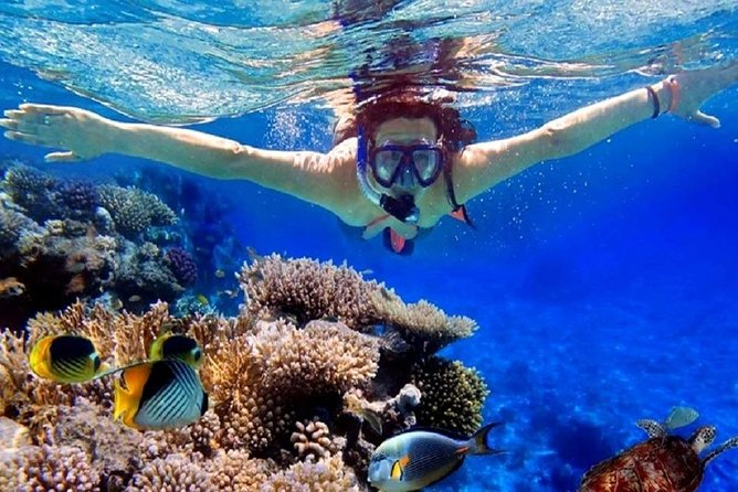 Full-Day Utopia Island Snorkeling Tour from Hurghada by Boat