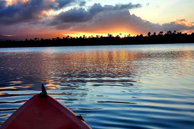 Laguna Grande- Bio Bay Night Kayaking with Round Trip Transport