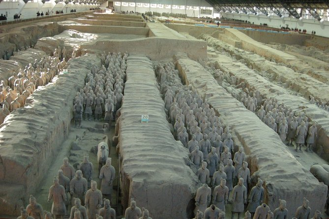 1-Day Xi'an Terracotta Warriors,Wild Goose Pagoda and Banpo Village Museum Tour
