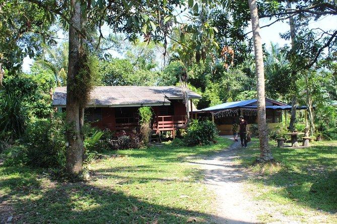 Malaysian countryside & modern city of PUTRAJAYA 农村한 지방