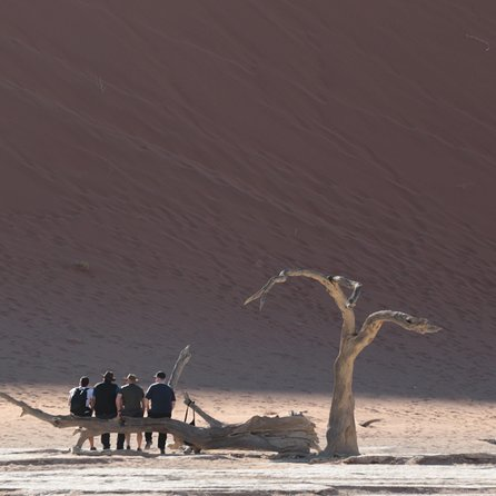 Spectacular Sossusvlei 2 day private tour