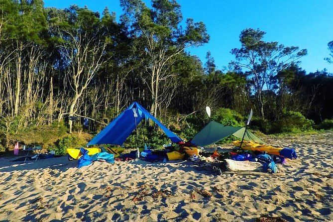 Batemans Bay Overnight Kayak Camping Tour from Canberra - All Inclusive photo 3