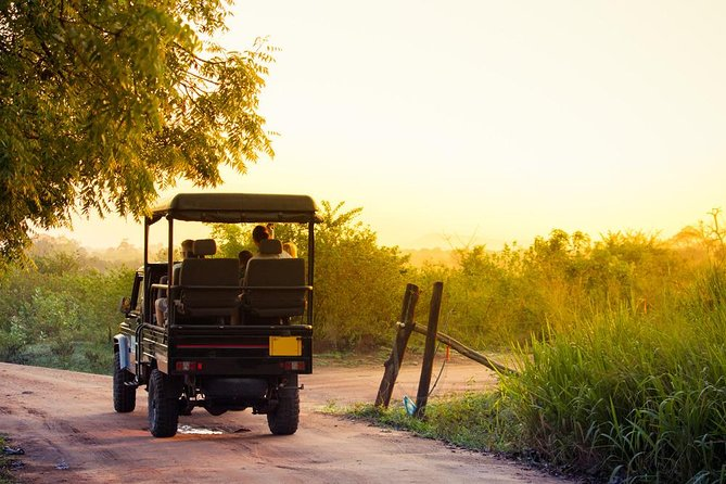 Untouched Wildlife Sri Lanka