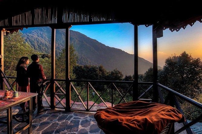 Jungle Lore Birding Lodge