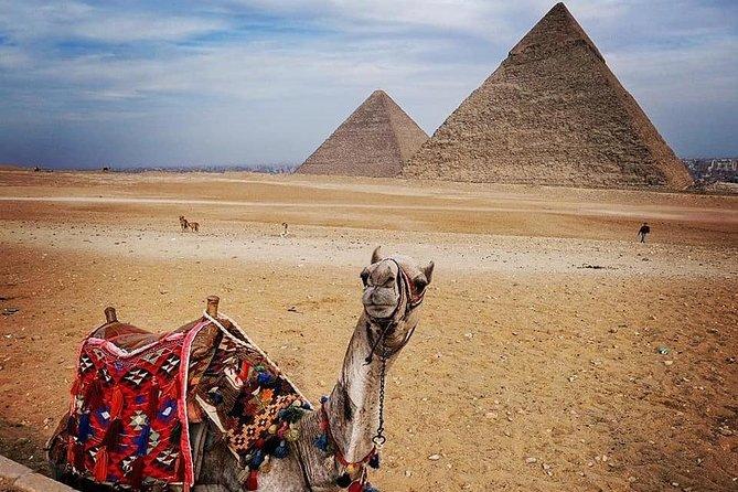 Full-Day Giza Pyramids Sphinx Sakkara Private Tour with Pickup