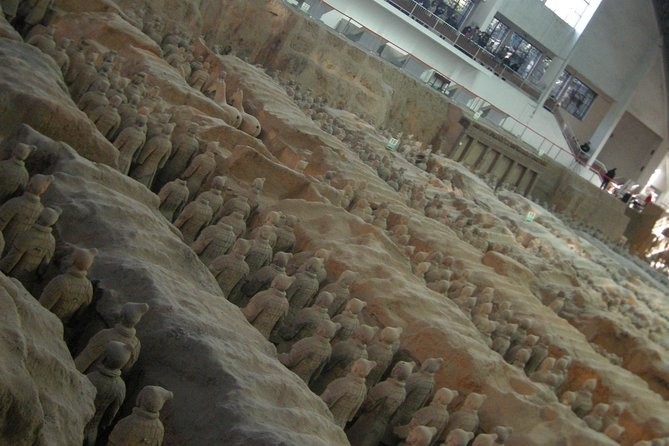 Xi'an Terracotta Warriors Museum and Xianyang Airport (XIY) Drop off Day Tour